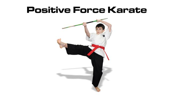 Positive Force Karate
